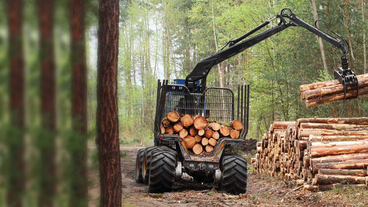 Radiocomandi settore forestale